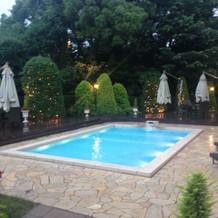 ガーデン。憧れのプールで緑も素敵です。