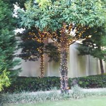 ガーデンの装飾