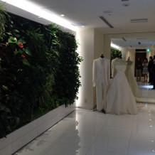 入場の際にバックが緑でドレスが映える。