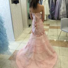 ご参考までに、試着したドレスたちです。