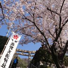 4月の挙式だったので、 良い気候でした。