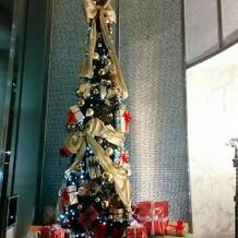 エントランスに飾られたクリスマスツリー