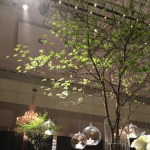 テーブルに大きな木
