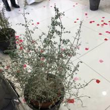 装飾は可愛い造花