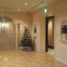 クリスマスツリーも飾られていました