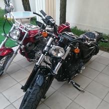 ガーデンにバイク