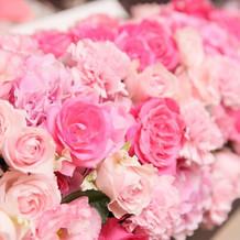 だいすきなピンクに囲まれて