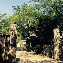 三渓園正門から会場に向かいます。