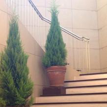 フラワーシャワーのできる階段