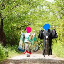 神社の側に、ジブリ風の素敵な小道