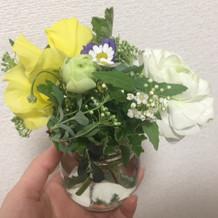 いただいたお花です