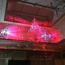 天井の3Dマッピング