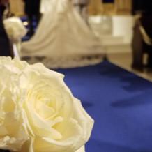 白いバラに青いじゅうたんがとてもきれい
