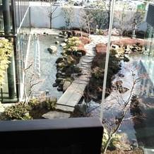 控え室からの庭園