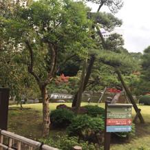 ニューオータニの日本庭園は素敵です
