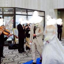 バイオリン生演奏