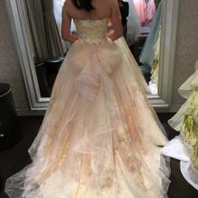 気に入ったドレスがありました!