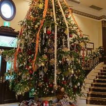 天井まで届くクリスマスツリー!