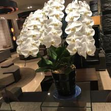 胡蝶蘭が飾ってあります