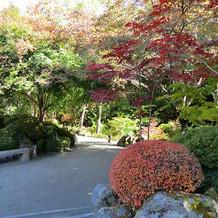 庭園(結婚式用写真撮影場所)