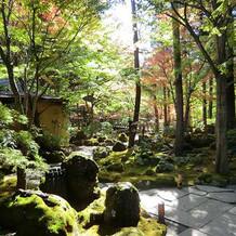 庭園(結婚式アルバム用写真撮影場所)