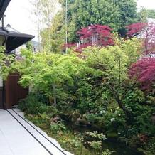 1階披露宴会場のお庭