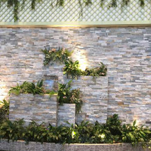 室内ガーデンの壁