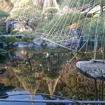 ロビーからの日本庭園