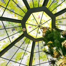 エントラスの天井。
