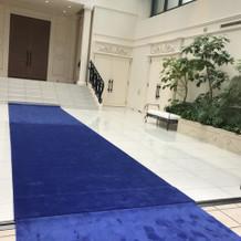 フラワーシャワーを行う外の青い絨毯(1)