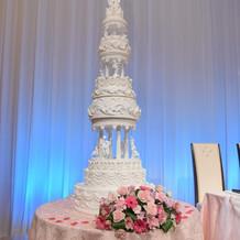 天井が高くケーキが映えます