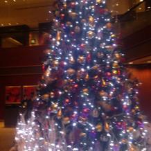 ロビーにあるクリスマスツリー
