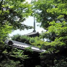 敷地内から八坂の塔が見られます