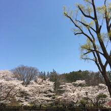 すごくいいお天気!