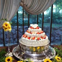 ケーキと会場の壁