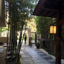 入口のお庭