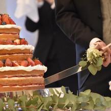 珍しいタイプのケーキ