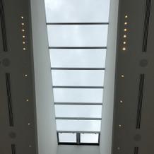 天井にも窓があり、くもりでも明るいです