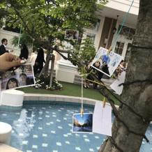 プールのあるガーデンでゲストと写真撮影