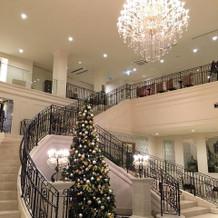 ロビー、クリスマスツリーが素敵
