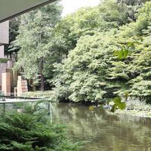 緑豊かな庭園