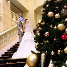 大階段脇にクリスマスツリー