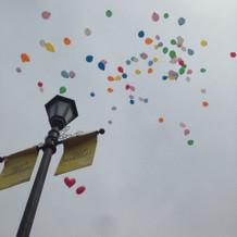 空高く飛ぶ風船が綺麗でした。