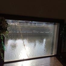 運河が見えます