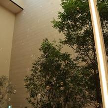 ガーデンでバブルシャワーもできます