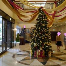冬はロビーに大きなクリスマスツリー