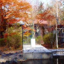チャペル横の池にも紅葉がありました