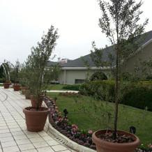 屋上庭園がとても広いです