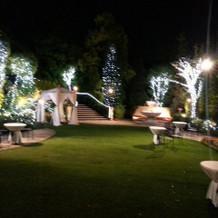 夜のライトアップ(ガーデン)