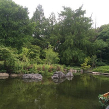 ガーデンと池
